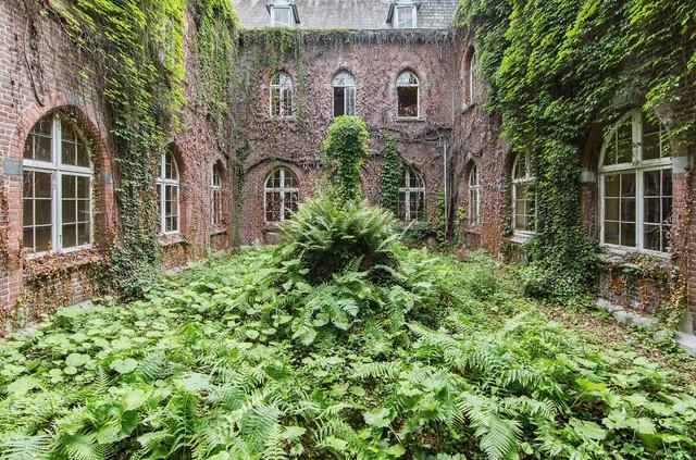 Tòa nhà bị bỏ hoang phủ kín cây xanh ở Bỉ