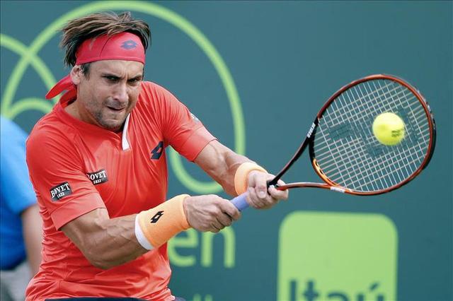David Ferrer đã không thể tạo nên bất ngờ trước Novak Djokovic