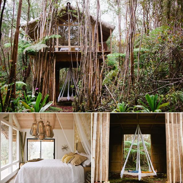Ngôi nhà ở trong rừng Fern, Hawaii.