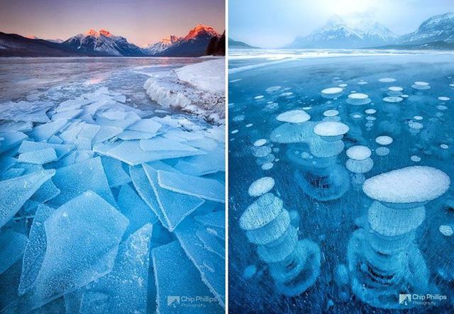 Những cột bong bóng nổi trên mặt hồ ở Abraham, Canada