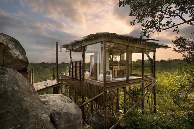 Khách sạn Kingston ở Nam Phi có kiến trúc dạng nhà cây, đậm chất hoang dã.