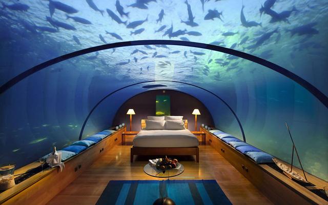 Phòng nghỉ thuộc resort Conrad Maldives ở đảo Rangali nằm dưới nước, giúp bạn có cơ hội quan sát những sinh vật biển quanh mình.