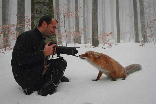 Và ghi lại những hình ảnh của loài động vật này.