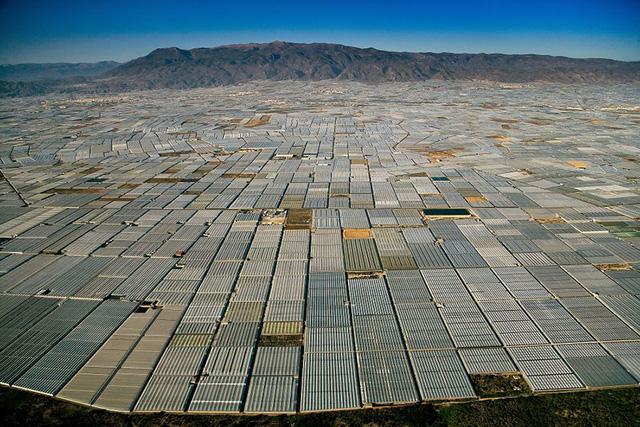 Quang cảnh được bao phủ bởi vô số tấm nhà kính ở Almeria (Tây Ban Nha).