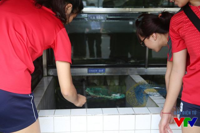 Bùi Thị Ngà tò mò vớt chú cá chạch quế khỏi bể.