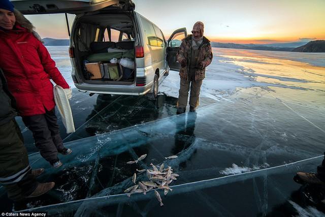 Những du khách mạo hiểm tới đây còn có thể câu được những con cá tươi ở nước hồ dưới lớp băng.