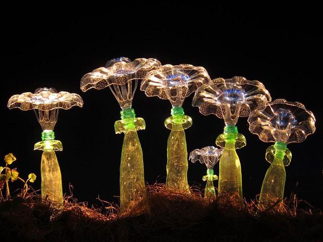 Vỏ chai còn trở thành những cây nấm nhân tạo độc đáo.