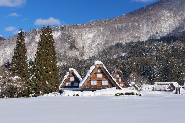 Những căn nhà truyền thống ở ngôi làng Shirakawa, Nhật Bản nép  mình sau những bóng cây
