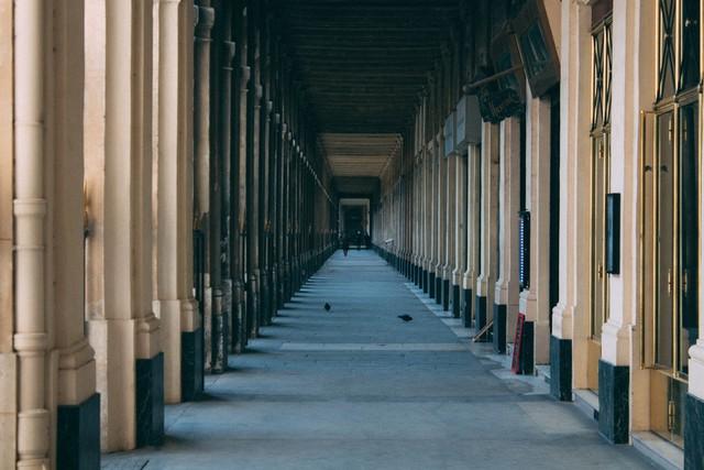 Palais-Royal, thành phố Paris, Pháp. Ảnh: Anne-Sophie Tchicot/Snapwire