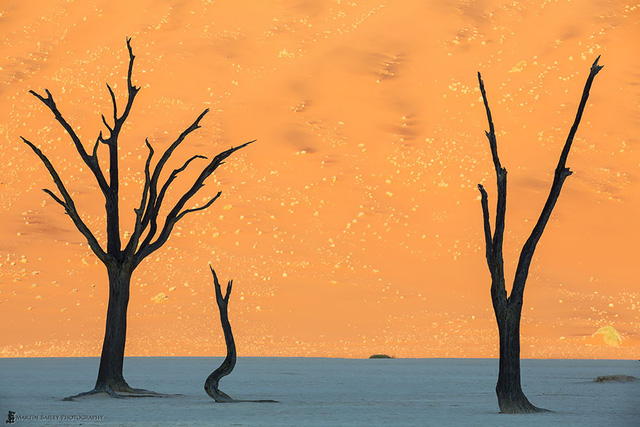 21. Sa mạc Namib ở Namibia