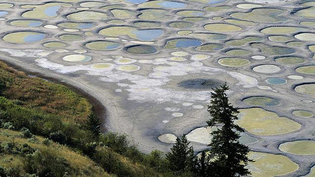 25. Hồ đốm Osoyoos ở Canada