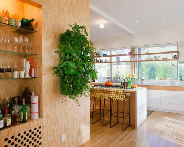 Không gian xanh là điều không thể thiếu trong nhiều ngôi nhà hiện nay. Để góp phần tạo nên không gian ấy, bạn có thể trang trí bức tường bằng những cây treo tường, những chậu hoa nhỏ.
