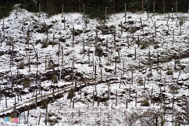 Tuyết phủ trắng xóa ở khu vực Trạm Tôn.