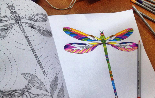 Một hình vẽ trong cuốn sách
