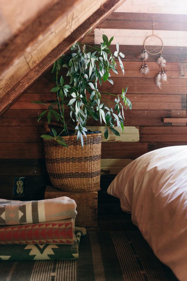 Mặc dù vậy, chủ nhân là người yêu thiên nhiên nên vẫn dành không gian cho những chậu cây trong nhà.