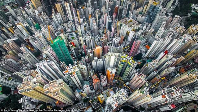 Cuộc thi ảnh thường niên của tạp chí National Geographic tiếp tục là nơi tập hợp những bức ảnh du lịch ngoạn mục. Các nhiếp ảnh gia cho người xem thấy, không phải đi đâu xa, về những làng quê đẹp như cổ tích mà ngay cả những đô thị hiện đại cũng mang vẻ đẹp riêng đầy sức hút. Trong ảnh là những tòa nhà chung cư ở Hong Kong (Trung Quốc) của nhiếp ảnh gia Andy Yeung.