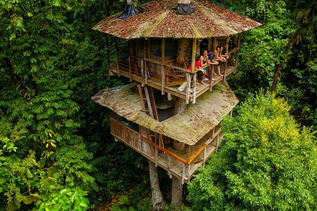 Khách sạn hình thành từ những ngôi nhà trên cây như thế này.