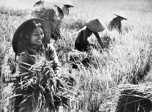 Hình ảnh người phụ nữ Việt Nam hiện lên trong âm nhạc với vẻ đẹp vốn có và đã trở thành nhân vật trung tâm trong tác phẩm.