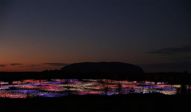 Bruce Munro, nghệ sĩ thiết kế và lắp đặt ánh sáng đến từ nước Anh được biết đến như người mang lại ánh sáng cho những vùng quê hẻo lánh bằng cách thắp lên hàng trăm nghìn bóng đèn.