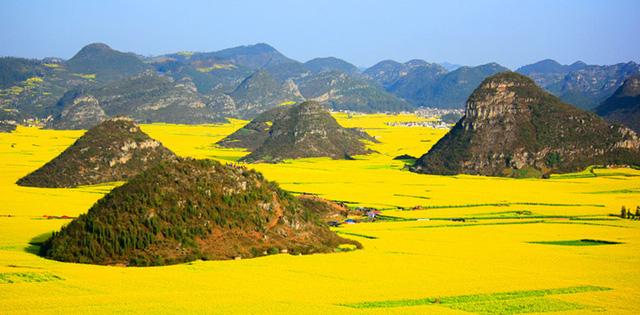 Cánh đồng Luoping, Trung Quốc ở vùng miền núi phía Đông Trung Quốc vào mùa hoa cải biến thành một biển vàng mênh mông, chói sáng.