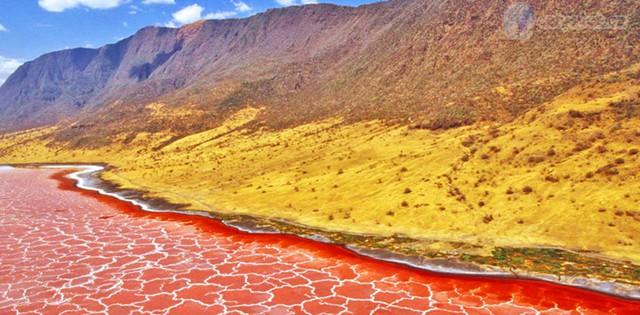 Hồ muối Natron, Tanzania có độ mặn rất cao nên rất ít thực vật, động vật tồn tại được trong môi trường này. Hồ có màu đỏ cam rực rỡ tuyệt đẹp.