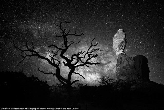 Utah một lần nữa chứng tỏ là một thắng cảnh nổi tiếng cho các nhiếp ảnh gia. Hình ảnh này chụp Rock Balanced và một thân cây trơ trụi trong Vườn quốc gia Arches, Australia.