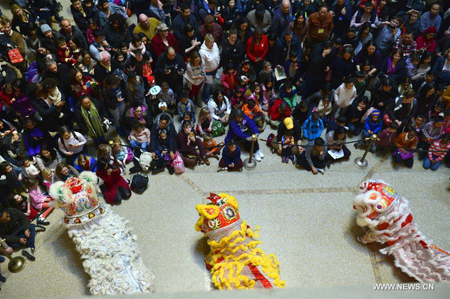 Các màn múa lân sư tại bảo tảng Metropolitan thu hút sự quan tâm rất lớn của người dân New York