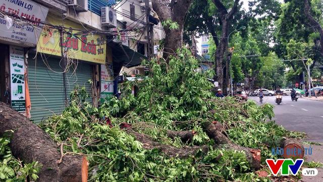 Hầu hết các tuyến phố đã thông thoáng sau khi chịu ảnh hưởng nặng của cơn bão số 1.