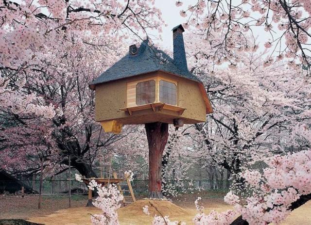 Nhà cây tại Hokuto, Nhật Bản được xây dựng bởi Terunobu Fujimori. Ngôi nhà là nơi tuyệt vời để uống trà và ngắm hoa anh đào tại Nhật Bản.