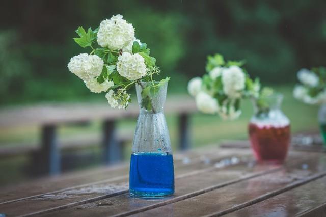 Bạn có thể cho một vài giọt chất tạo màu vào nước cắm hoa để tránh sự đơn điệu.