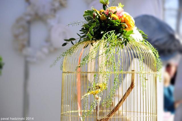 Cắm hoa trên lồng chim - một ý tưởng độc đáo làm vật trang trí cho ngôi nhà của bạn.