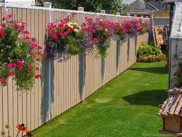 Hàng rào của bạn sẽ không hề nhàm chán khi treo những chậu hoa rực rỡ thế này