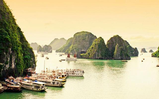 Hình ảnh những hòn đảo với những dãy núi đá vôi cao ngất được bao quanh bởi làn nước màu xanh lục bảo, Vịnh Hạ Long, Việt Nam bao gồm hơn 1600 hòn đảo lớn nhỏ. Khu vực này thu hút rất nhiều khách tham quan, thợ lặn, người leo núi và cả những người đi bộ đường dài.