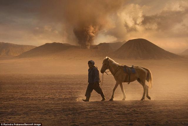 Trong nhiều thập kỷ qua, người dân tộc Tenggerese sống quanh đây bất chấp mọi hiểm nguy, dùng ngựa như một phương tiện chở đồ cho du khách. Người ta thường gọi họ là những kỵ binh.