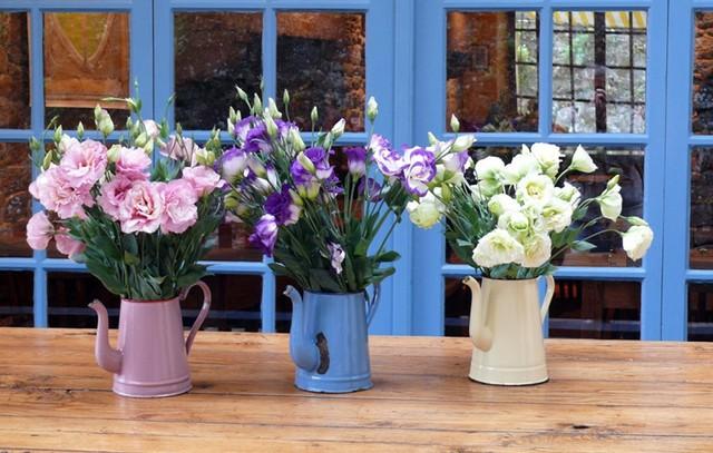 Đừng vội bỏ đi những bình tưới nước cũ, đó sẽ là những lọ cắm hoa tuyệt vời.
