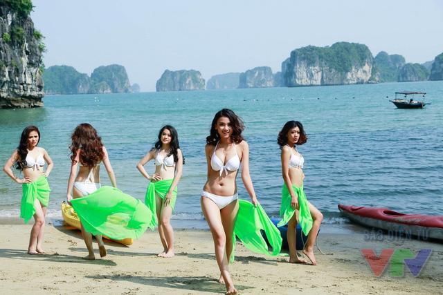 Những đường cong gợi cảm được các thí sinh Hoa hậu Biển thể hiện hết sức quyến rũ