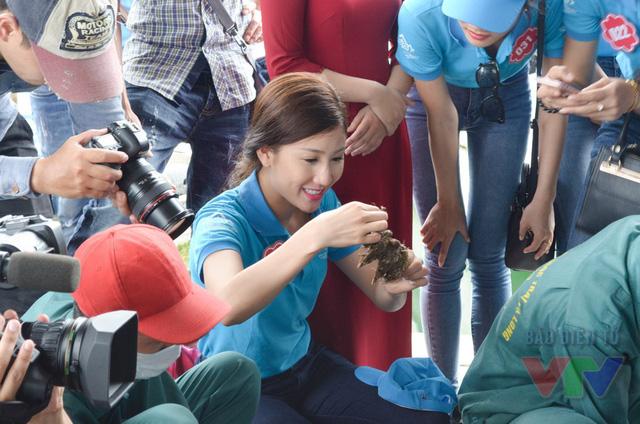Nhiều người đẹp được tận tay chạm vào sản vật quý của biển Hạ Long