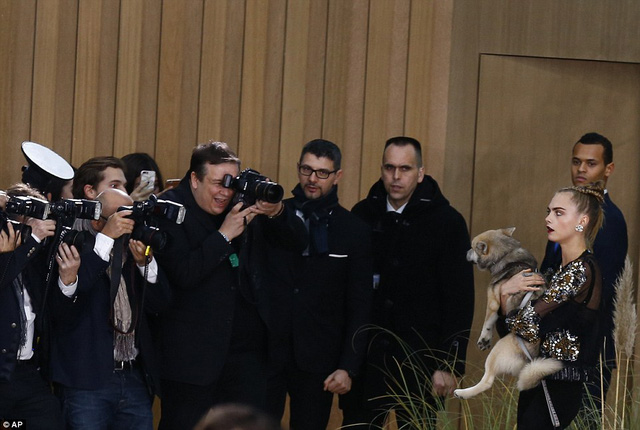 Sự xuất hiện của Cara Delevingne và chú cún này khiến giới truyền thông liên tục để mắt