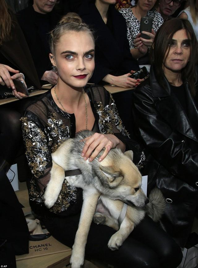 Trái lại, cô rất vui khi cún cưng của mình nhận được sự quan tâm của mọi người xung quanh