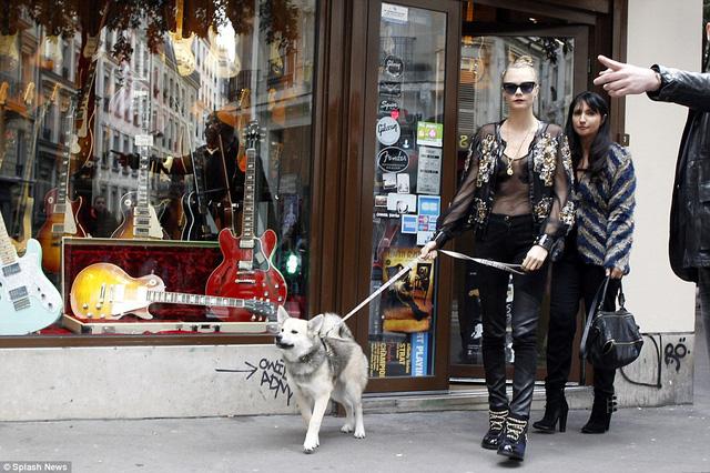 Mới đây, Cara Delevingne đã gây bất ngờ khi lần đầu tiên đưa một chú cún đến show thời trang đẳng cấp của Chanel