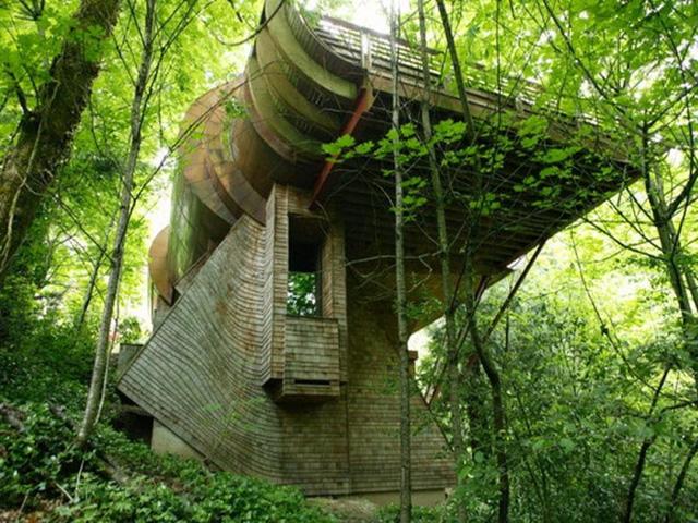 Kiến trúc sư Robert Harvey Oshatz đã tạo ra một tác phẩm nghệ thuật tuyệt vời với ngôi nhà gỗ cây tại Portland, Oregon. Thiết kế ấn tượng này phải mất 7 năm mới xây dựng xong và được hoàn thành vào 2004. Theo KTS, phải đi dạo hết căn nhà mới thấy được sự phức tạp của thiết kế và sự gắn kết của nó với thiên nhiên.