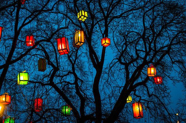 Buổi tối ở Erfurt được thắp sáng bởi những chiếc đèn lồng đủ sắc màu.