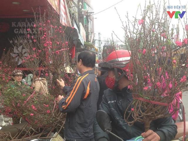 Hoa đào được người dân Thủ đô ưa chuộng vào dịp rằm tháng Giêng.
