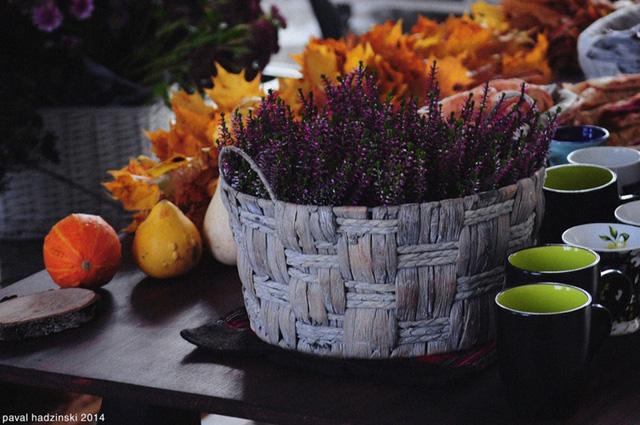 Hoa được đặt trong giỏ sẽ khiến cho không gian của bạn trở nên ấm cúng. Bạn nên đặt vào trong giỏ những miếng xốp rồi cắm hoa lên đó để duy trì độ ẩm, giúp hoa được tươi lâu hơn.