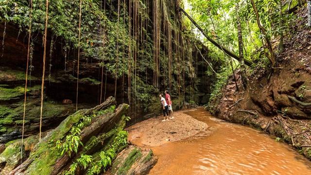 Vườn tiểu bang Jalapao là điểm đến ưa thích của những nhà thám hiểm với địa hình phong phú, là sự kết hợp của đồng bằng, những cồn cát vàng, sông ngòi và thác nước. Khung cảnh thiên nhiên hoang dã ở đây luôn hấp dẫn du khách.