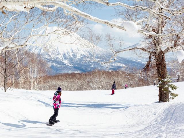Khu resort này có những con dốc để trượt tuyết và vị trí lí tưởng để ngắm khung cảnh núi Yotei - một ngọn núi lửa đã không còn hoạt động.