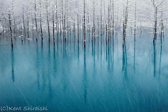 Hokkaido là hòn đảo lớn thứ hai Nhật Bản nằm ở phía Bắc. Nơi đây là một vùng đất rộng lớn và hoang dã với diện tích gấp 40 lần Tokyo nhưng dân số chỉ bằng có 1/3. Nếu ghé thăm vùng đất đầy cuốn hút này, hãy nhớ ghé thăm Ao Xanh (Aoiike) với dòng nước màu xanh trong tuyệt đẹp được tạo nên từ khoáng chất thiên nhiên.