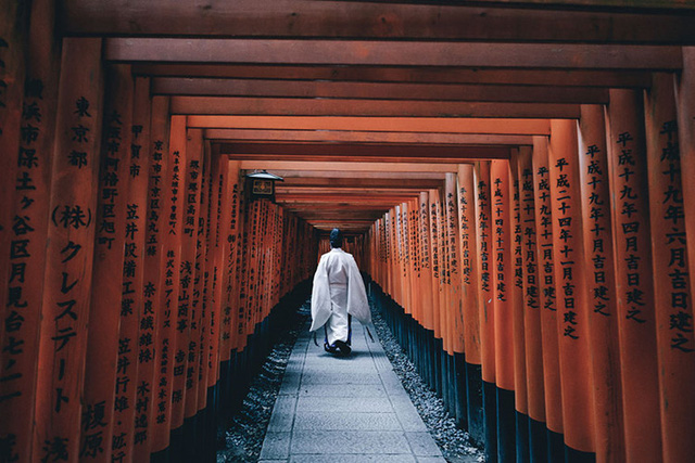 Fushimi Inari Shine là một trong những đền thờ thần đạo (Shinto) quan trọng nhất ở nam Kyoto ghi nhớ công lao của Inari – vị thần của lúa gạo. Những con cáo ở đây được cho là sứ giả của thần Inari vì vậy mà có rất nhiều bức tượng cáo quanh đền. Điểm thu hút du khách chính là hàng nghìn cánh cổng đền Thần đạo sơn son xếp liên tiếp nhau quanh những gian nhà chính.