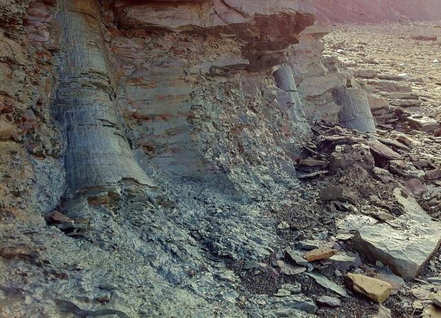Những dốc đá thẳng đứng được xem là địa danh đối chứng tuyệt vời cho thời đại than đá. Ảnh: fundytreasures.