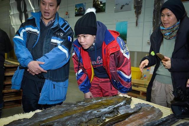 Đây là tảo Công bố - một trong những nguyên liệu nấu ăn chủ yếu trong đời sống người Nhật (tạo vị ngọt cho nước dùng thay cho mì chính, bột ngọt). Đây được xem như là một trong những bí quyết giúp cho tuổi thọ của người Nhật được xếp vào hạng cao nhất trên thế giới! Đinh Mạnh Ninh cho biết tảo trước mặt anh trong bức hình là tảo loại 1 với mức giá 300.000 yên/15kg (xấp xỉ 60 triệu đồng).